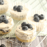 Blueberry Cheesecake Fat Bombs