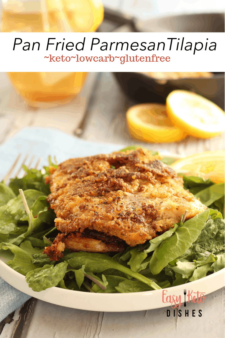 parmesan pan fried tilapia on bed of mixed greens